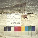 Kammer 1.2.4, obere Nordwand, mittig ein Tapetennagel mit roten Faserresten, Mitte des 19. Jahrh.