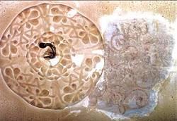 Großer Raums zur Straße, freigelegte Reste der Deckenfassung II, Rankenmalerei, befeuchtet