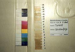 EG, Tür von der Stube (1.1.3, Südwand) zur Kammer (1.1.4), Türblatt bauzeitlich, 17 Farbschichten konnten nachgewiesen werden